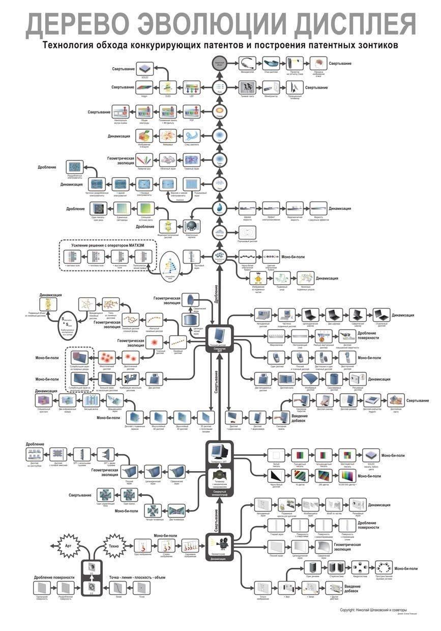 """Деревья эволюции: консалтинговый проект для компании Samsung от ЦКТ """"Идеальные Решения"""""""